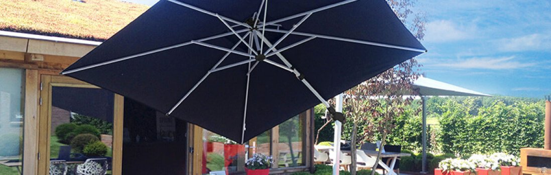 Wake your parasol from its hibernation in 3 steps